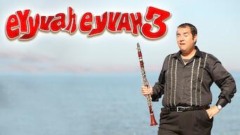 Eyyvah Eyyvah 3 (2014)