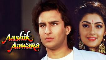 Aashik Awara (1993)