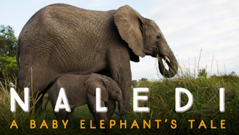 Naledi: A Baby Elephant's Tale (2016)