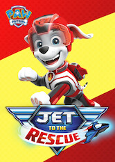 Search netflix Paw Patrol: Jet to the Rescue