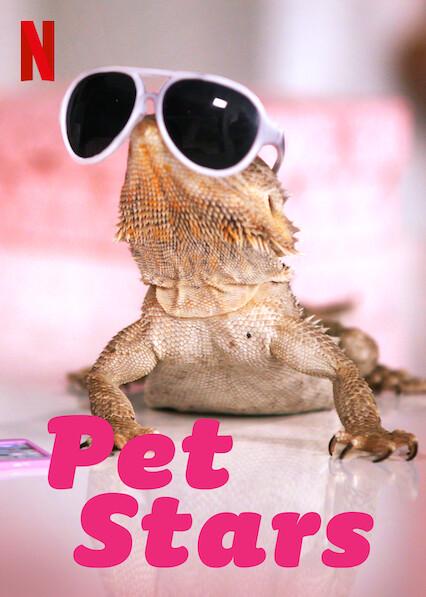Pet Stars on Netflix Canada